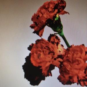 John Legend %22Made To Love%22 Art